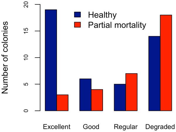 Acropora palmata. Health Status and habitat status.