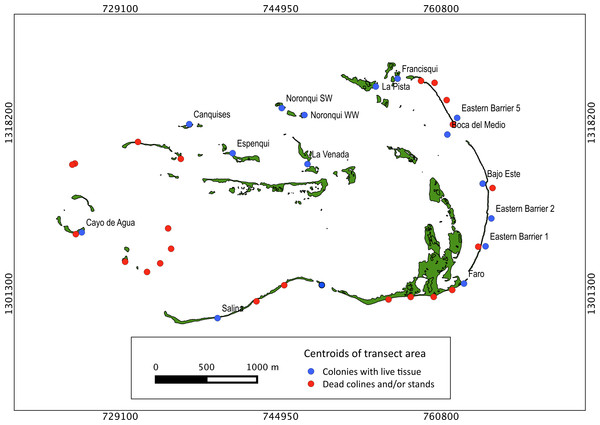 Historical distribution of Acropora palmata.