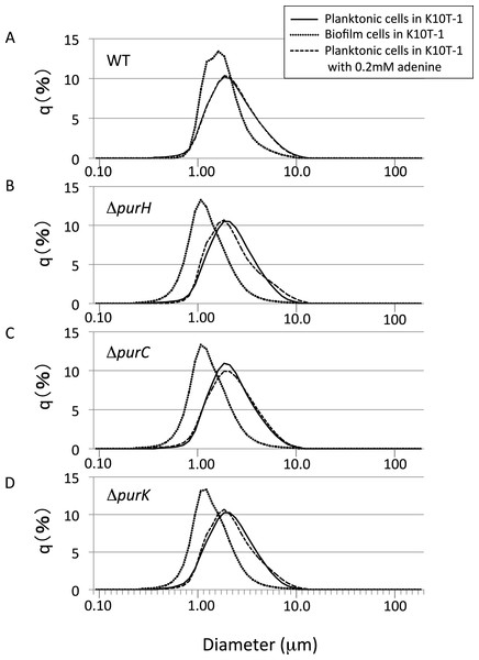 The size distributions for the planktonic and biofilm cells of WT and mutants obtained using a laser diffraction particle analyzer.