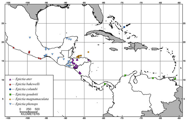 Map showing localities for specimens examined of the Epictia goudotii complex.