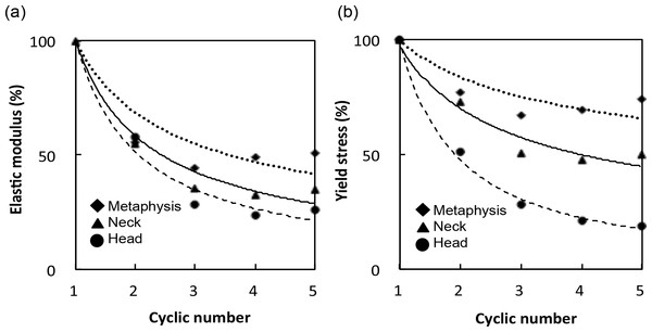 (A) Elastic modulus and (B) yield stress of each cycle are expressed relative to those of the first cycle.