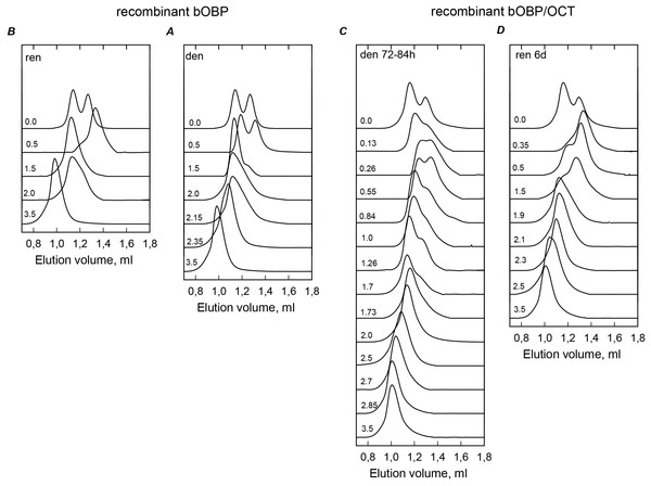 The changes of hydrodynamic dimensions of recombinant bOBP (A and B) and its complex with ligand bOBP/OCT (C and D) in different structural states.