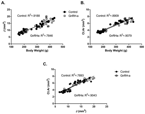 Linear regression of body weight and bone structural variables for the GnRH-a and control groups.