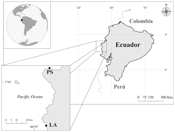 Study area and sampling sites in the coast of Ecuador: Los Ahorcados (LA) and Perpetuo Socorro (PS).