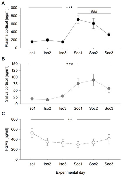 Glucocorticoid levels during social isolation and after social confrontations in experiment 1.