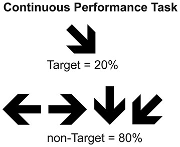 Continuous Performance Task.