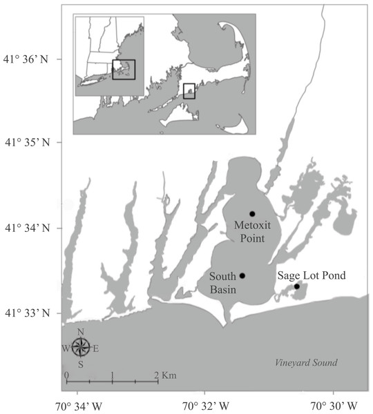 Map of sampling stations.