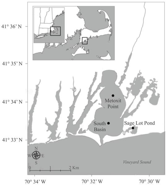 Map of sampling stations.