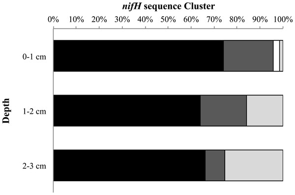 nifH cluster identity with depth.