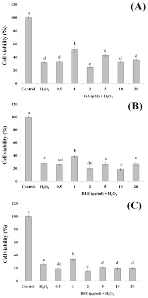 The cytoprotective effects of (A) gallic acid, (B) BLE and (C) BSE on HepG2 cells following H2O2-induced oxidative damage.