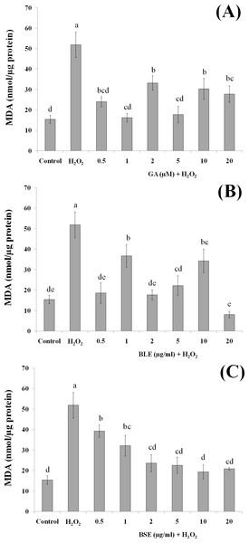 The effects of (A) gallic acid, (B) BLE and (C) BSE on lipid peroxidation of HepG2 cells following H2O2-induced oxidative damage.
