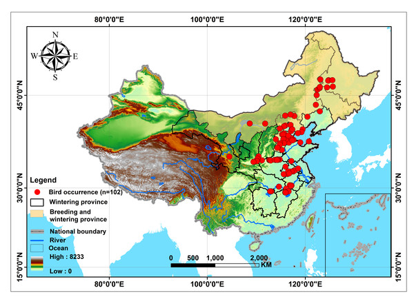 The study area for predicting the distribution of Great Bustards (Otis tarda dybowskii) in China.