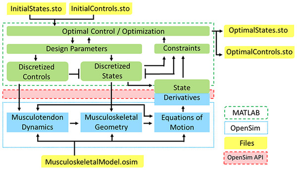 OpenSim-MATLAB interface for solving optimal control problems using direct collocation.