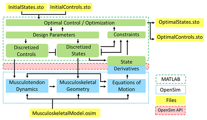 Generating optimal control simulations of musculoskeletal movement