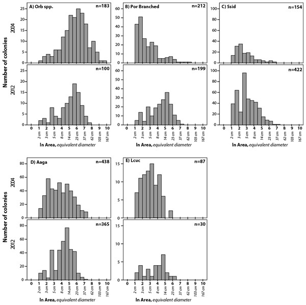Size frequency distributions for five taxa that showed significant difference between 2004 and 2012.