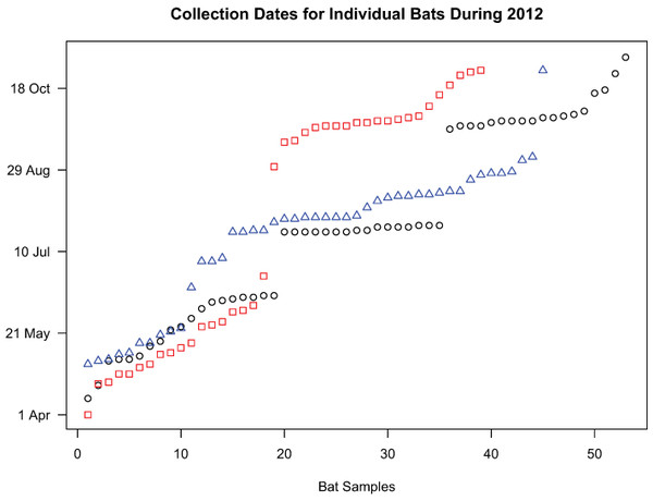 Collection dates of bats chosen for genetic analyses.