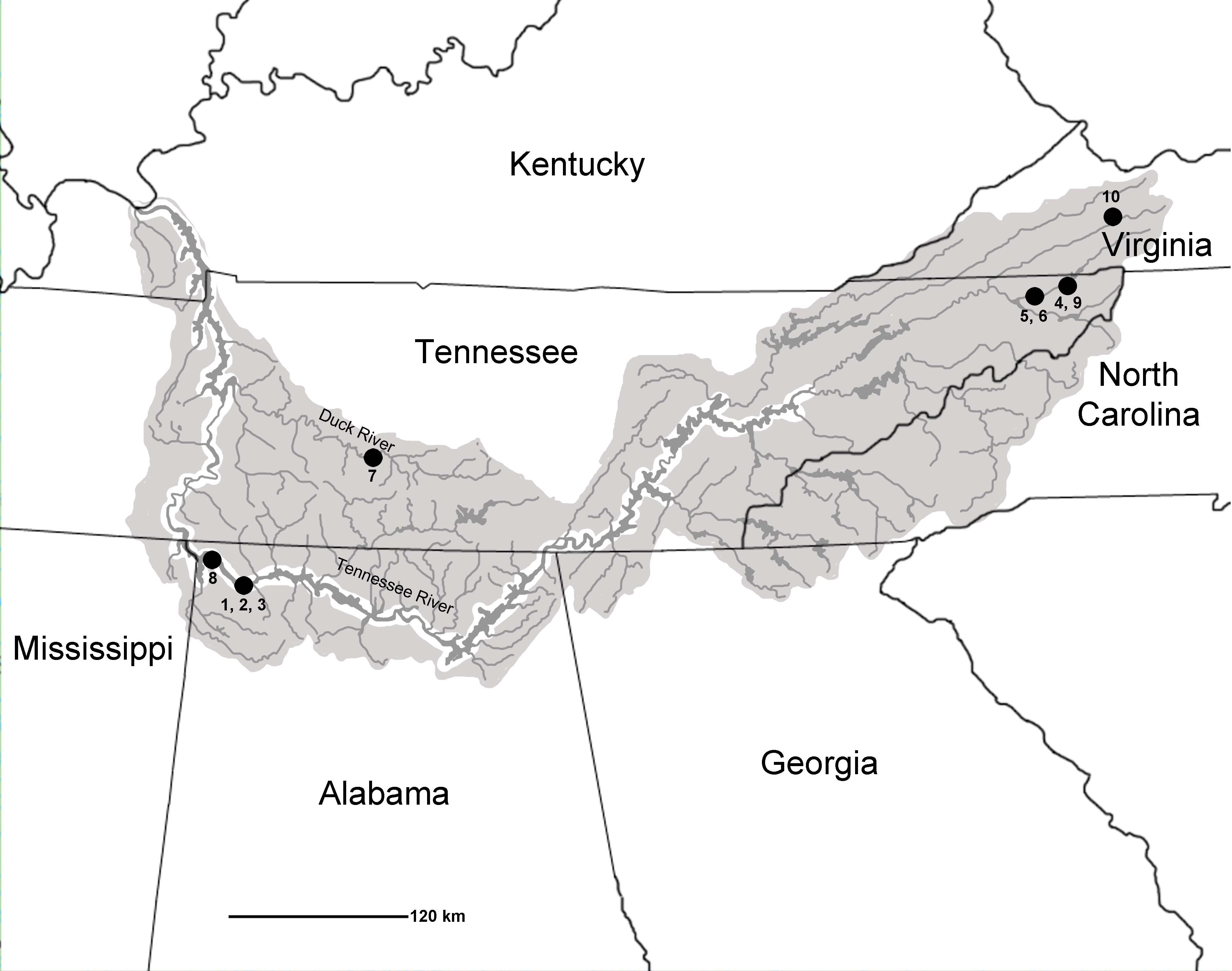 Georgia Map Map Of Georgia USA Detailed GA Map United States Of - Us map tennessee