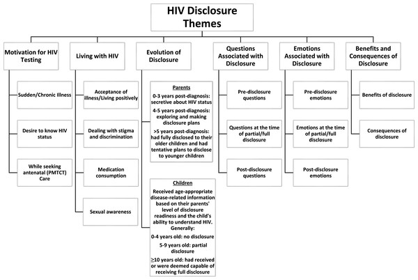 HIV disclosure themes.