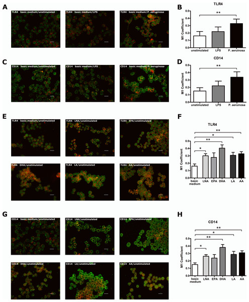 Stimulus- or PUFA-mediated modulation of the co-localization of TLR4 or CD14 with the raft marker GM1 on RAW264.7 macrophages.