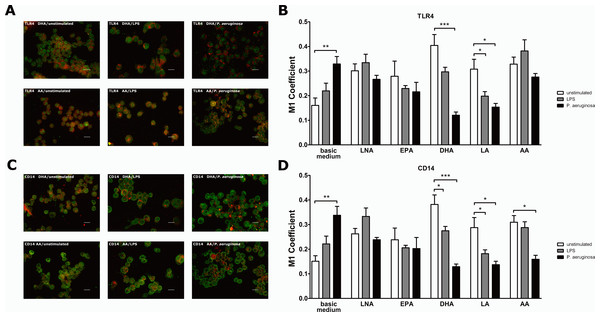 Co-localization of TLR4 or CD14 with the raft marker GM1 on PUFA-enriched and stimulated RAW264.7 macrophages.