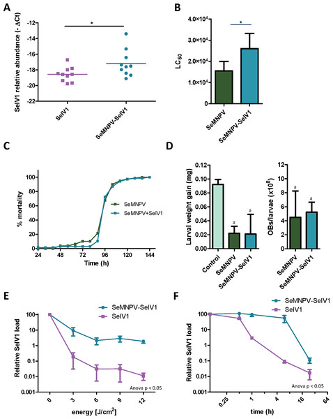 Stability, replication and host growth effects of SeIV1 and SeMNPV in association or alone.