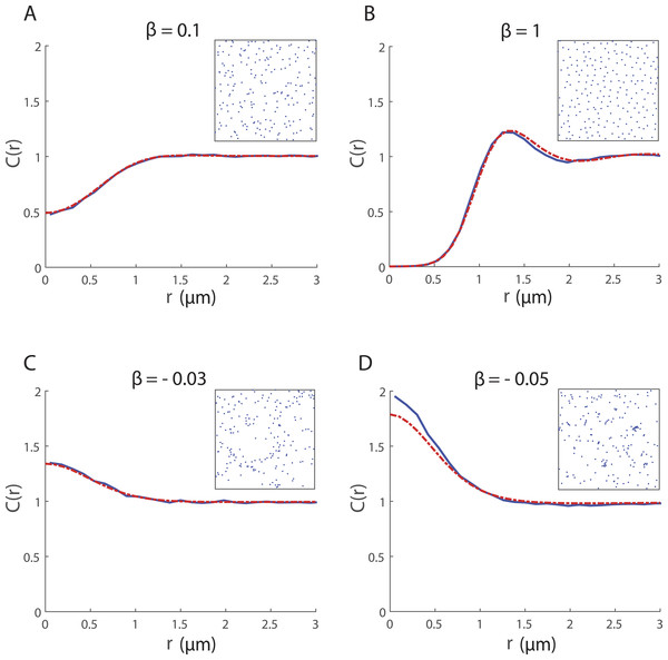 Spatial structure for 200 cells undergoing collective movement with neighbour-dependent directional bias (α = 0h−1) in a 20μ m × 20μ m domain at time t = 25 h.
