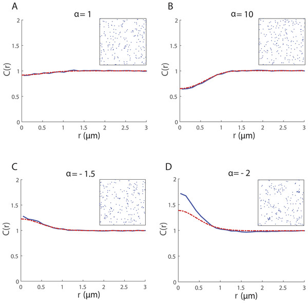 Spatial structure for 200 cells undergoing collective movement with neighbour-dependent motility (β = 0μm) in a 20 μm × 20 μm domain at time t = 25 h.