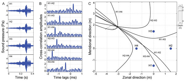 Schematic of acoustic localization of humpback dolphins whistle.