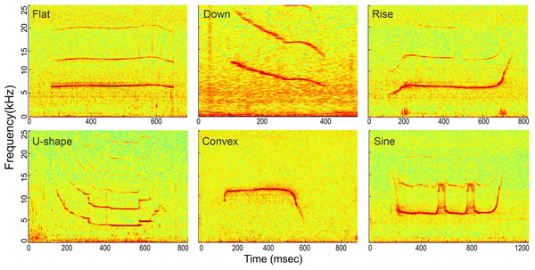 Spectrogram of the six whistle tonal types.