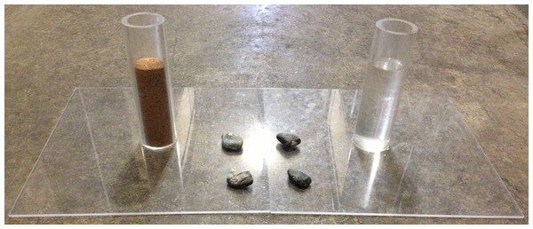 Water vs. Sand experiment.