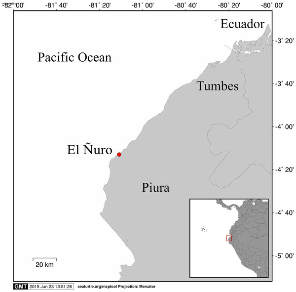 Map of northern Peru showing the location where the hybrid sea turtle was found.