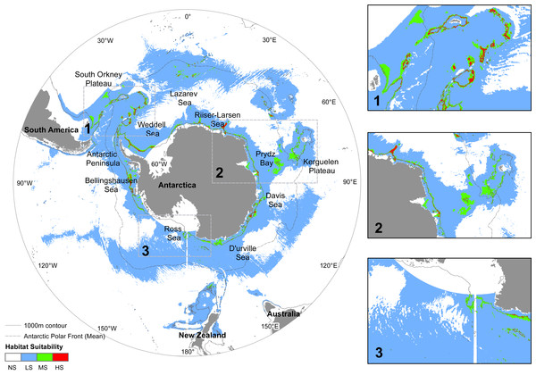 Predicted distribution of N. lanceopes during the Last Glacial Maximum.