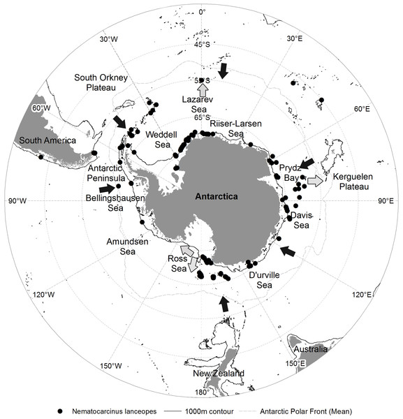 Predicted range contraction and expansion direction of N. lanceopes populations in the Southern Ocean based on the model predictions of Past, Present and Future environment conditions in relation to present population locations.