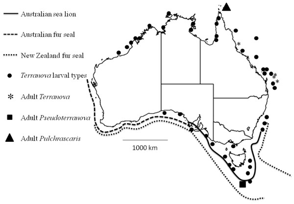 Map shows reported cases of Terranova larval types (circles), Adult Terranova spp (asterisk), adult Pseudoterranova spp (square), adult Pulchrascaris (triangle), distribution of Australian sea lion (solid line), Australian fur seal (square dots) and New Zealand fur seal (round dot).