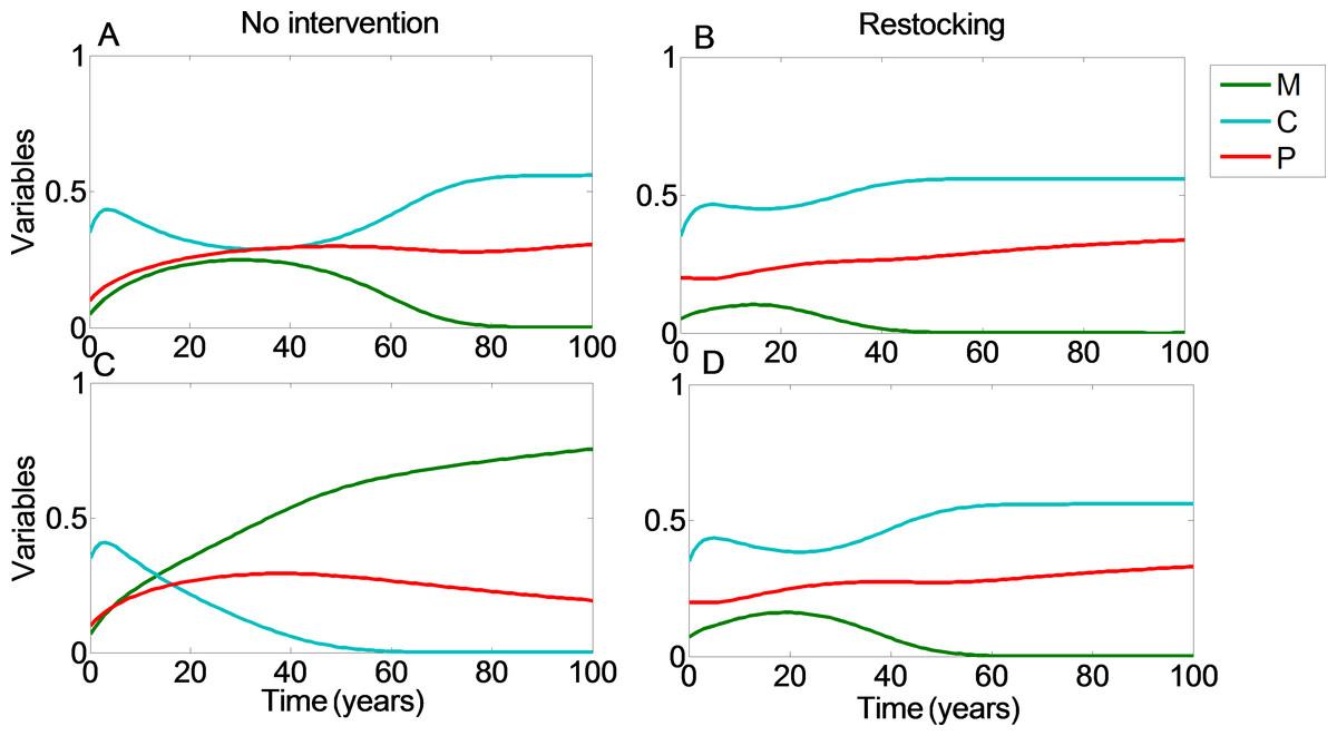 restocking shortens restoration time