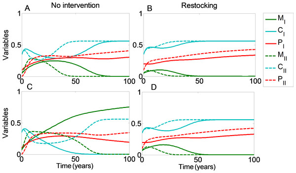 Restocking shortens restoration time in connected reefs.