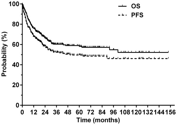 Overall survival (OS) and progression-free survival (PFS) for the entire cohort.