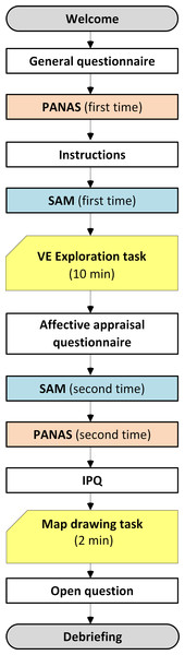 Timeline of the experimental procedure.
