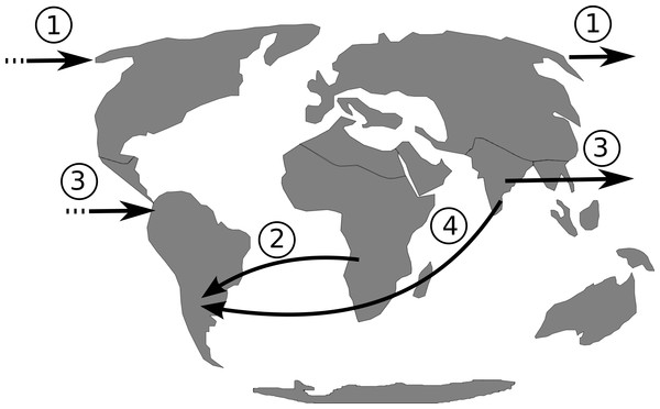 Putative dispersal routes of the ancestor of Philodendron and American Homalomena to the Neotropical region during the Miocene.