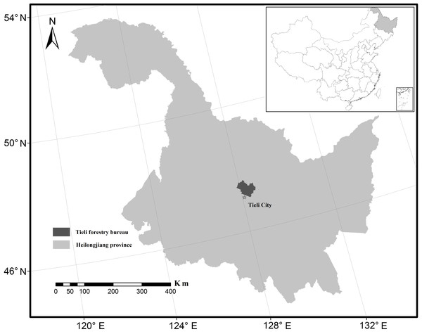 Location of the Tieli Forestry Bureau study area in the Lesser Xing'an Mountains.