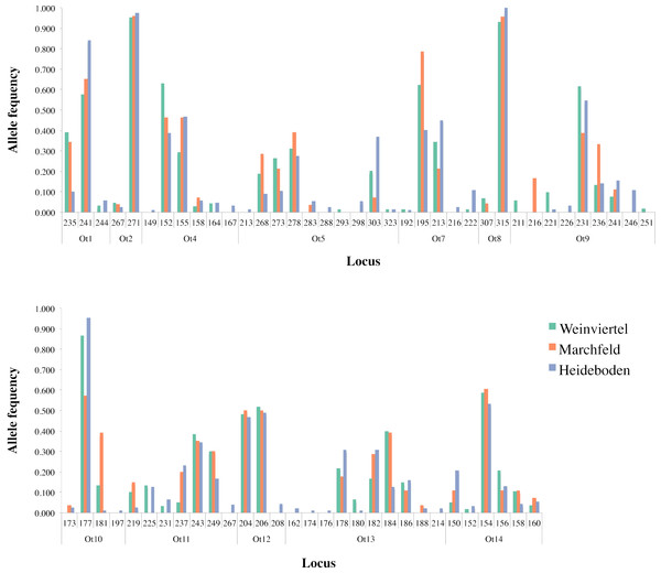 Allele frequency distribution of the twelve analysed microsatellite loci across the three breeding areas.