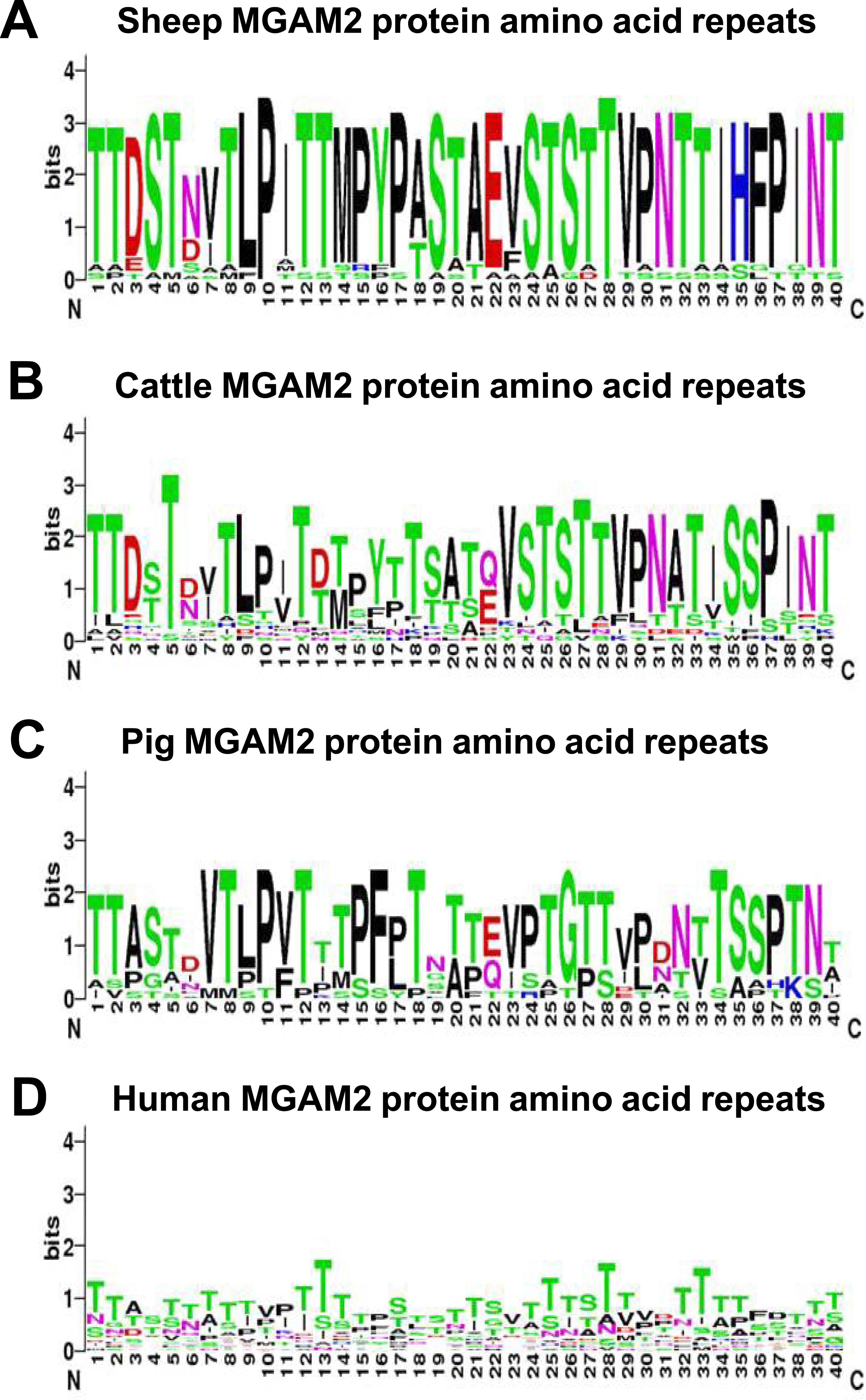 Epithelial, metabolic and innate immunity transcriptomic