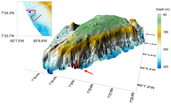 Hannibal Seamount, with location of the AUV transect indicated with a red line. Insert on the left delineates AUV transect, with end of transect near the blue cross.