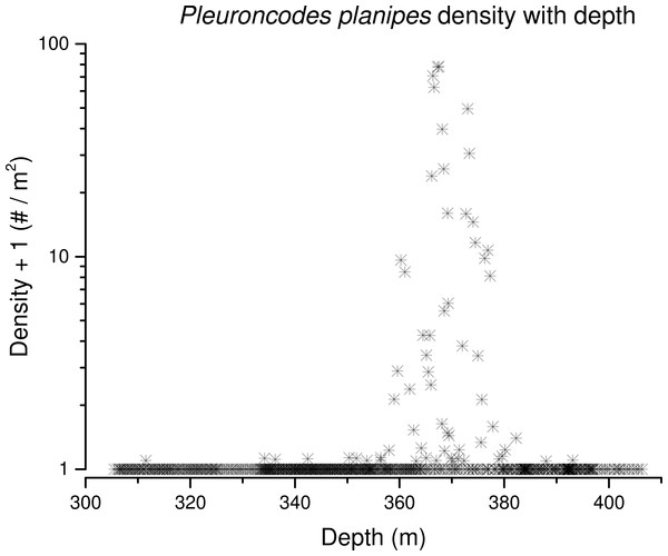 Pleuroncodes planipes density with depth.