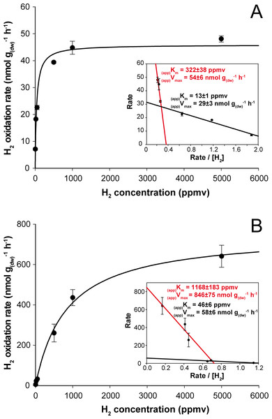Kinetic parameters governing H2 oxidation activity in soil microcosms incubated under (A) aH2 and (B) eH2 exposure.