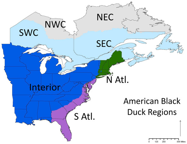 The conservation regions set by the Black Duck Joint Venture.