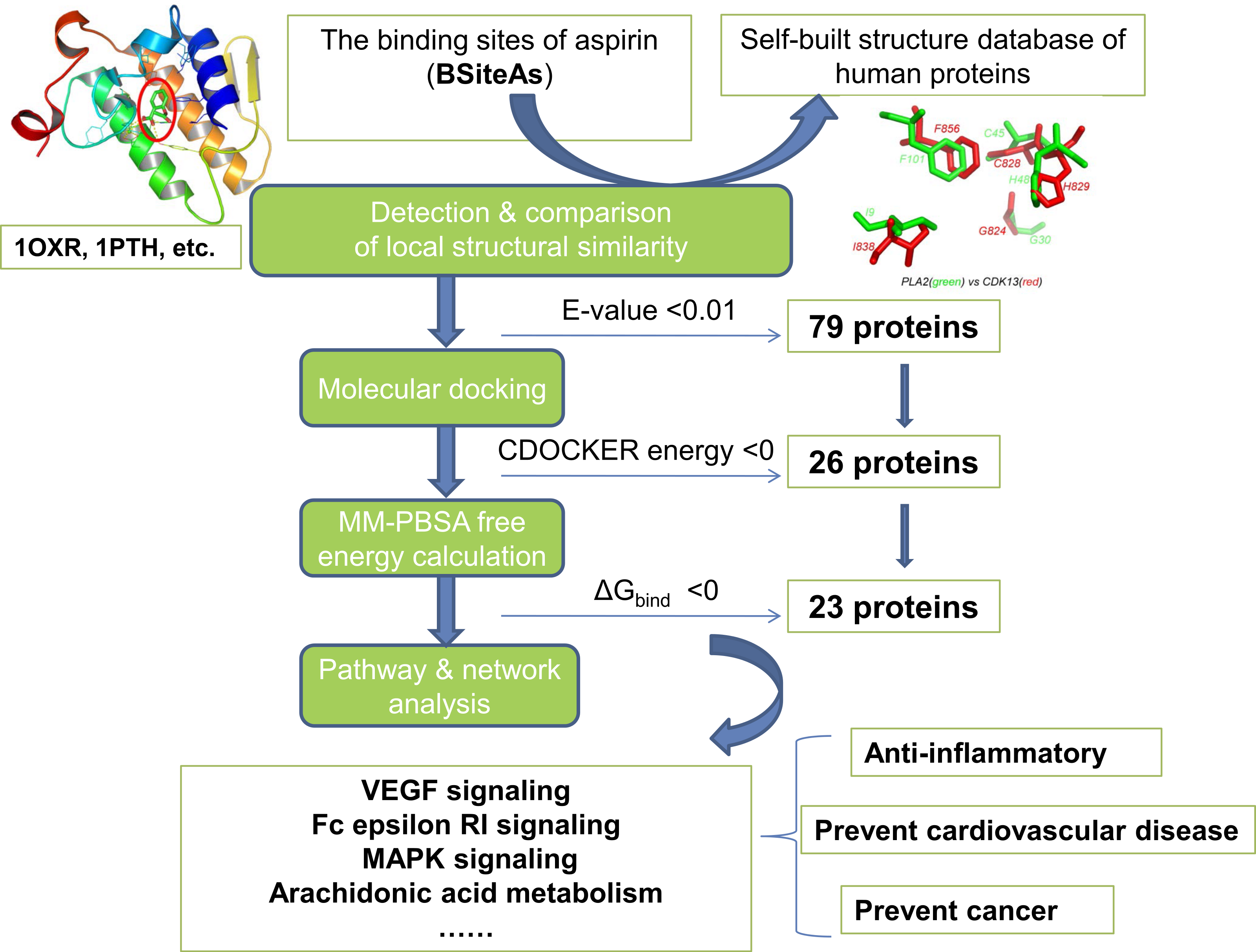 Proteome Wide Prediction Of Targets For Aspirin New