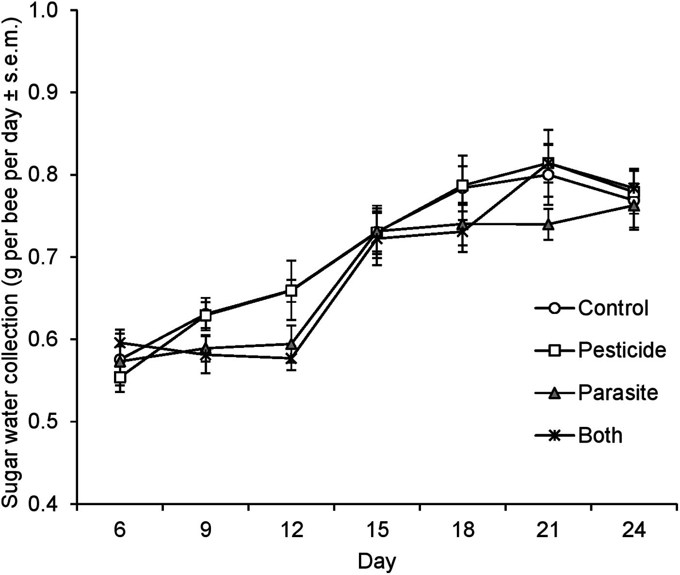 no effect of low level chronic neonicotinoid exposure on bumblebee