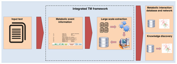 The integrated TM framework application.