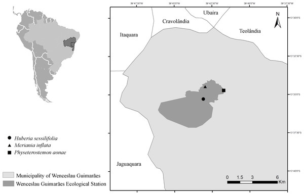 Map with the collection localities in the municipality of Wenceslau Guimarães, Bahia, Brazil.